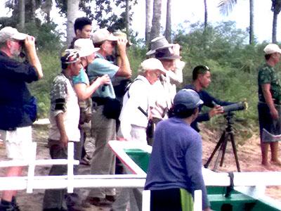 http://www.samuelbirding.com/wp-content/uploads/2016/12/mangrove-with-susan-mayer.jpg